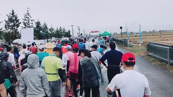 ハーフマラソン2週間前